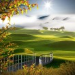 Golf place with nice maple color — Stock Photo