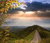 素敵な場所への道 — ストック写真