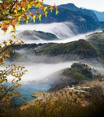 Beautiful mountain with nice maple — Stock Photo
