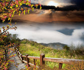 Alishan, gap the top Sunset — Stock Photo