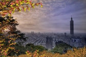 Night view of Taipei w nice maple — Stock Photo