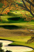 Golf veld — Stockfoto