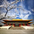 Stock Photo: National Theater in Taipei, Taiwan