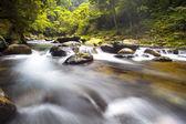 Cascade falls over mossy rocks — Stock Photo