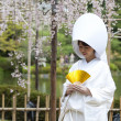 Japanese wedding costumes — Stock Photo