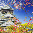 Osaka castle — Stock Photo #24170241
