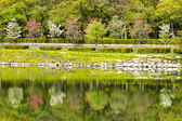 Nice view of Osaka park — Stock Photo