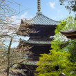 Nice temple with sakura — Stock Photo