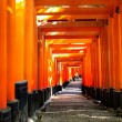 Fushimi Inari Taisha Shrine - Kyoto — Stock Photo #24394263
