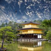 Gold temple japan — Stock Photo