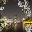 Night view of Osaka city — Stock Photo