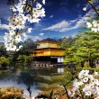 Beautiful sakura with gold color temple — Stock Photo