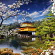 Beautiful sakura with gold color temple — Stock Photo #24583303