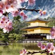 Stock Photo: Peaceful Golden Pavilion Temple