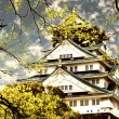 Osaka castle surrounded by cherry - Stock Photo