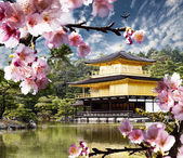Peaceful Golden Pavilion Temple — Stockfoto