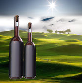 Wine bottle with nice view — Stock Photo