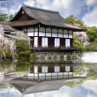 Nice view with temple at Japan — Stock Photo #31197339