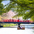 Sakura in Kyoto Japan — Stock Photo