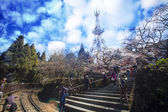 Алишан национального живописного района — Стоковое фото