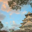 Time lapse of Himeji Castle, Japan — Stock Video