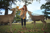Nara is a major tourism destination — Stock Photo