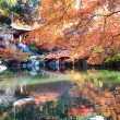 Fall season of Japan — Stockfoto #37417487