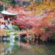 Fall season of Japan — Stockfoto #37452203