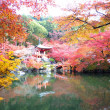 Fall season of Japan — Stockfoto #37460747
