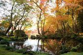 The fall season of Japan — Stock Photo