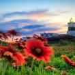 Stock Photo: Fuguei Cape Lighthouse, Taiwan