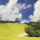 Campo de hierba del resorte y la montaña — Foto de Stock