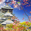 Stock Photo: OsakCastle in Osaka, Japan.