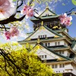 Osaka Castle in Osaka, Japan. — Stock Photo #40666661