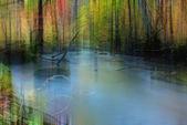 Autumn Colors of Oirase Rive — Stock Photo