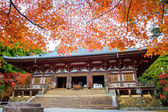 Jingo-ji — Stock Photo