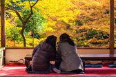 Colored Japanese maple leaf in Jingo-Ji — Stock Photo