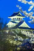 Nagahama Castle — Stock Photo