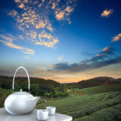 Teapot with nice background — Stock Photo