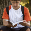 Teen with book(special photo fx,focus point on the face) - Stock Photo