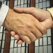 Two businessmen shaking hands — Stock Photo #15808653