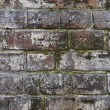 Bricks — Stock Photo #15808861