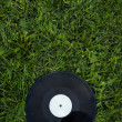 Disk on the green grass - Stock Photo