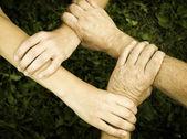 United hands — Stock Photo