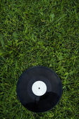 Disk on the green grass — Stock Photo