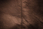 Genuine leather texture — Stock Photo