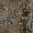 Abstract cracked background - Stock Photo