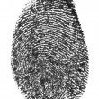 Finger print — Stock Photo