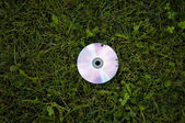 Cd on the green grass — Stock Photo