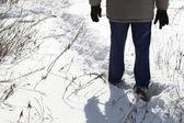 Caminhada de inverno — Fotografia Stock